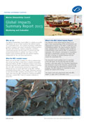 Global-impacts-summary-2013-front-cover